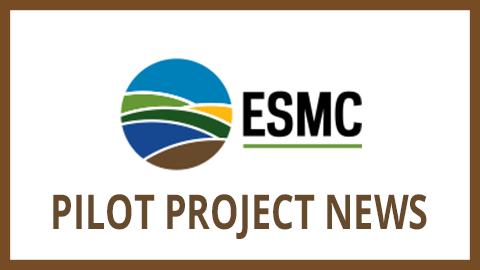 Pilot-Project-News